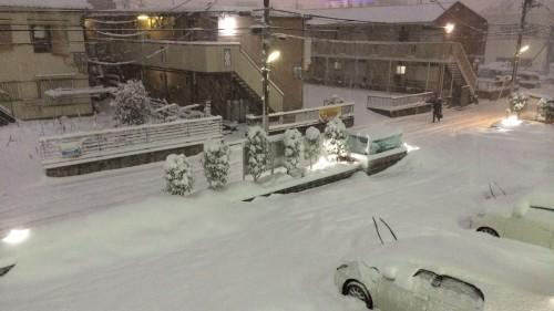 夜間の積雪