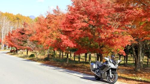 秋のツーリング