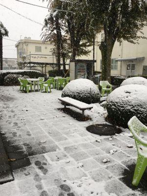 異例の11月積雪